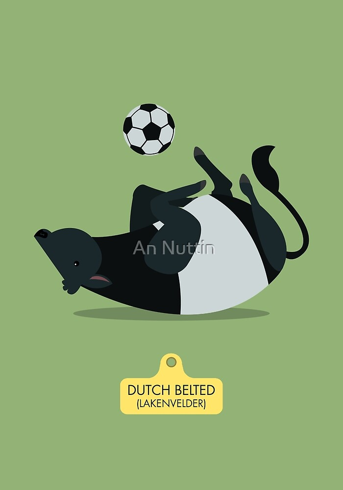 Dutch Belted by An Nuttin
