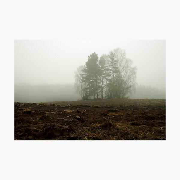 My land 3 Photographic Print