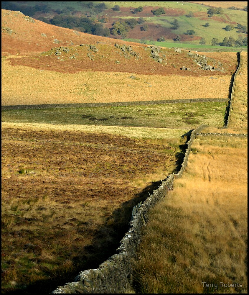 Wall by Terry Roberts