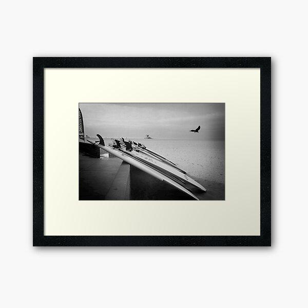 Surf Boards Framed Art Print