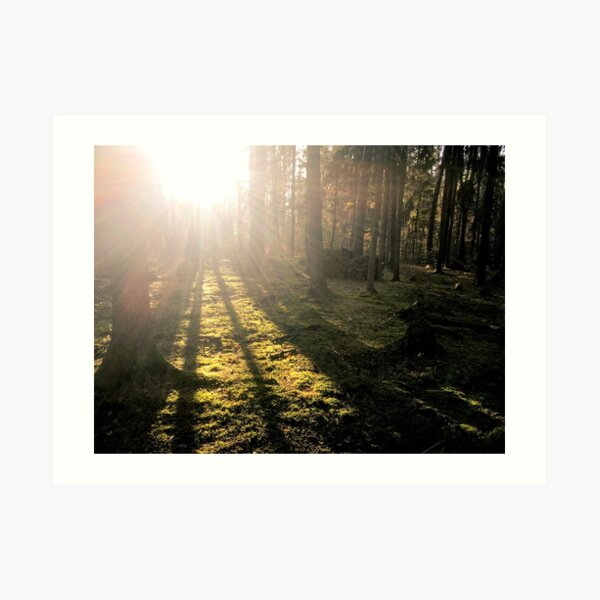 Waldeslust I Kunstdruck