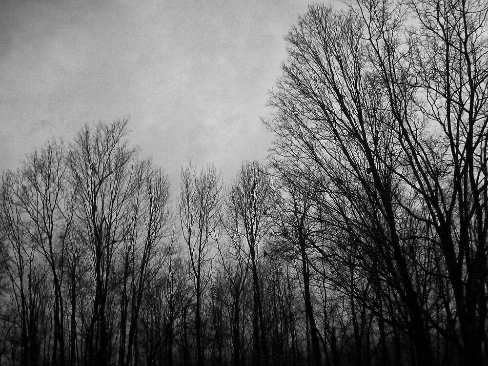 The Naked Fall by ripinamberlost