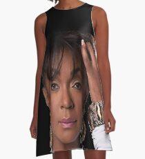Ms Anita A-Line Dress