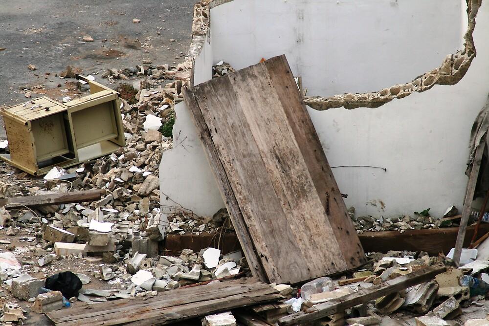 Ravaged Homes by Havoc