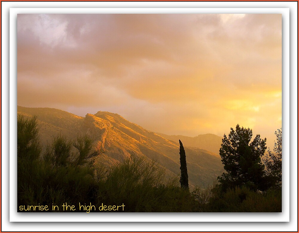 Sunrise in the High Desert by Terry Temple