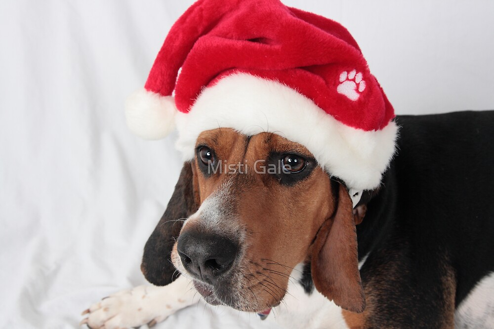 Coonhound Christmas Thought's by Misti Love