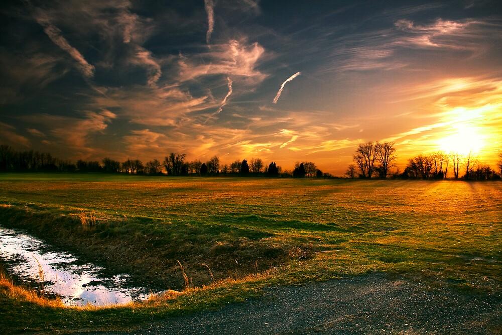 A summer field in New Jersey by Jason Howell
