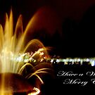 Merry Christmas  by MEV Photographs