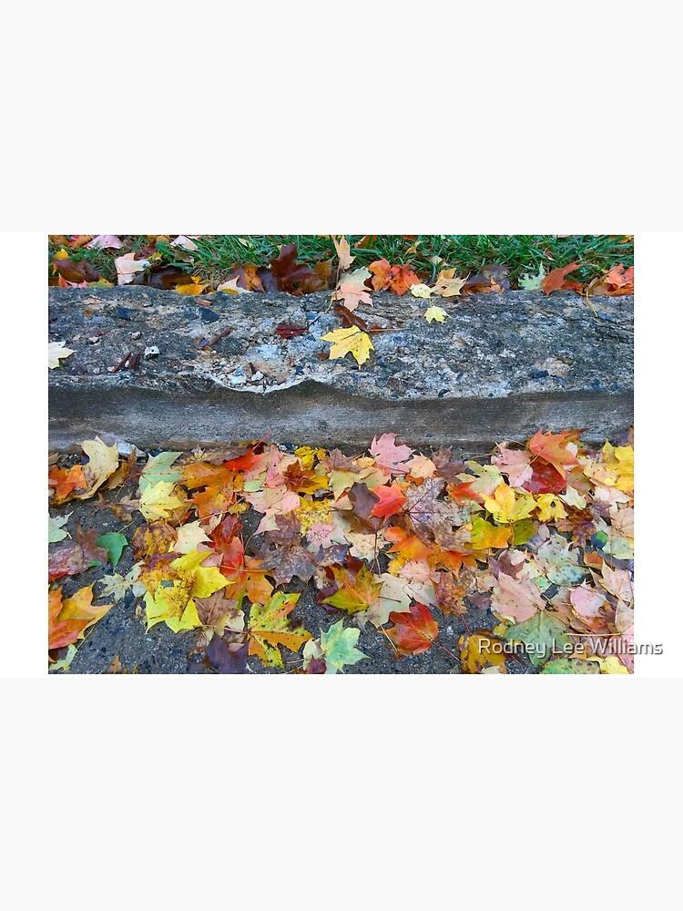 Rainy Autumn Morning by Rodwilliams