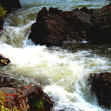 horsefly river by sbc7