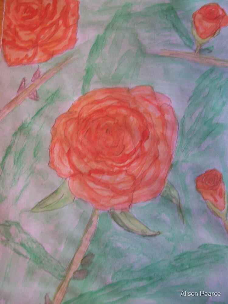 Orange Roses by Alison Pearce