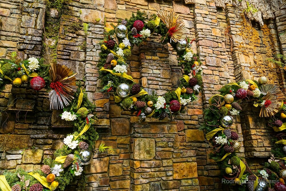 Wreaths on the Wall by Rodney Williams