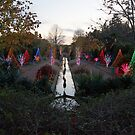 Christmas Garden 1 by Rodney Lee Williams