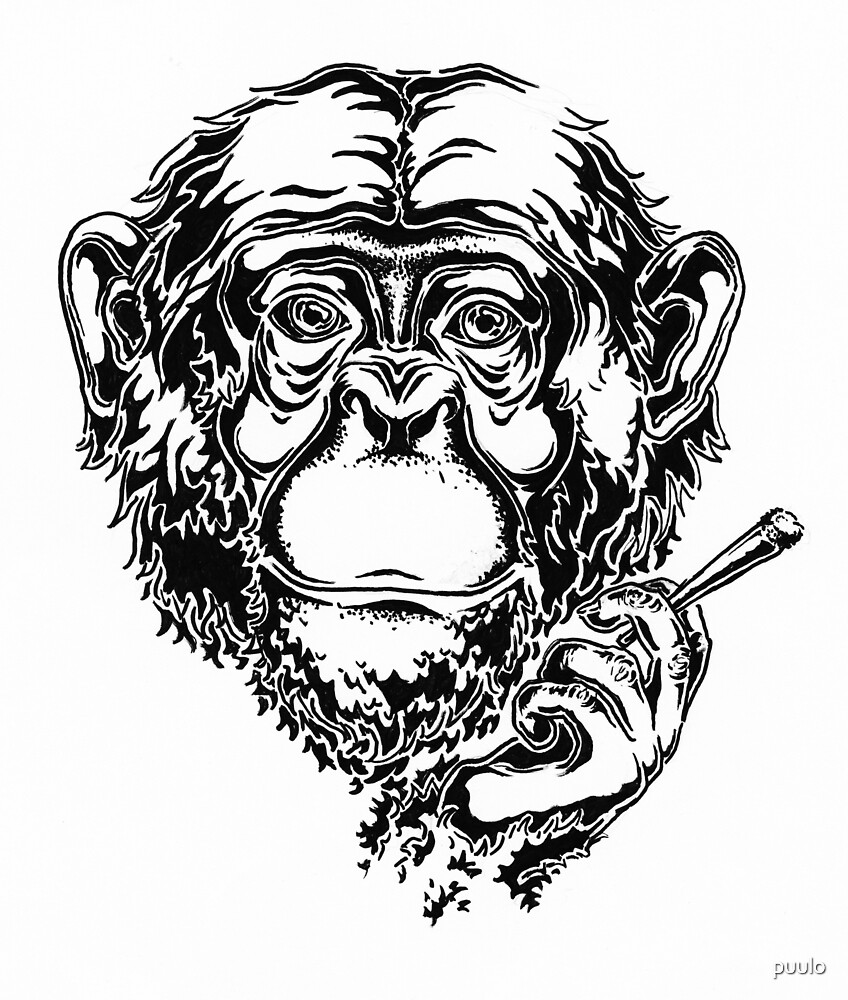 Smoking monkey by puulo