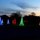 Christmas Garden 2 by Rodney Lee Williams