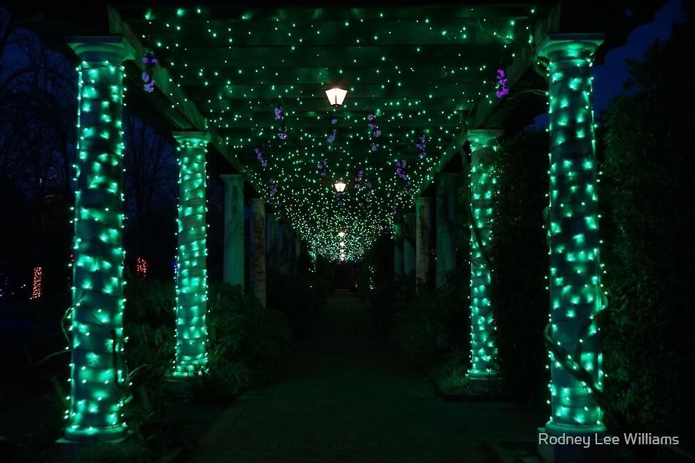 Christmas Garden 3 by Rodney Williams