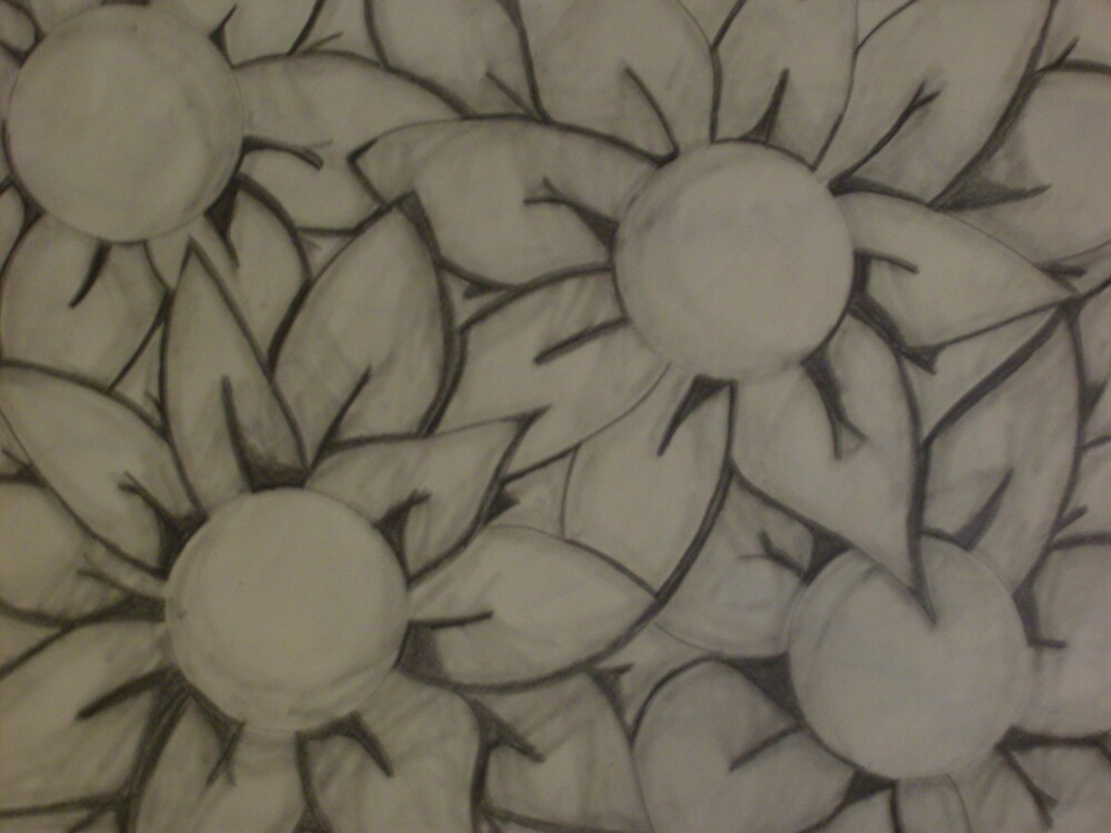Crazed Flower Mania by Shane Mason