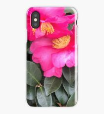 Sasanqua Camelia iPhone Case/Skin