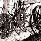 Wagon wheels by evapod