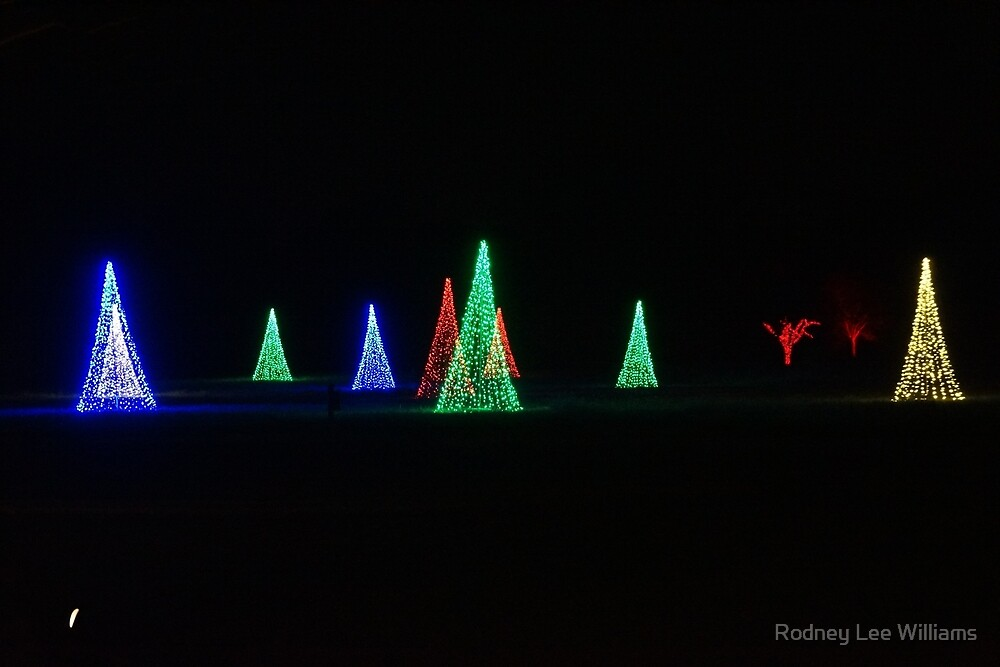 On a Silent Night by Rodney Williams