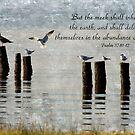 Psalm 37:10-12 by Jonicool