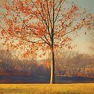 Autumnal Sunset by KathleenRinker