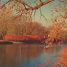 Sunset On The Susquehanna by KathleenRinker