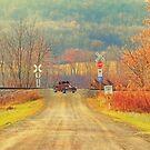 Railroad Crossing by KathleenRinker