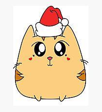 Christmas Cute Kitty Cat Photographic Print