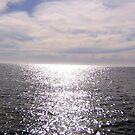 Water twinkles by evapod