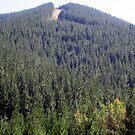 Mt Franklin by evapod