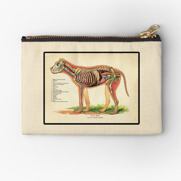 Vintage Veterinary School Dog Anatomy Chart Zipper Pouch