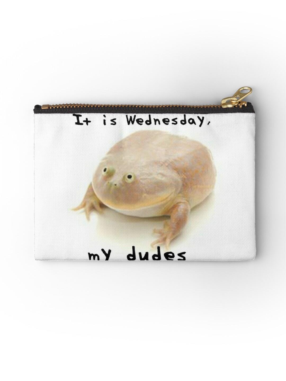 It Is Wednesday My Dudes Meme Reddit Frog Me_IRL Me IRL MeIRL ...