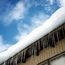 Icicles by evapod
