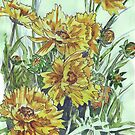 Bright and cheery Coreopsis by Maree Clarkson