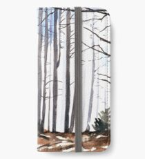 The colour of Winter is in the imagination iPhone Wallet/Case/Skin