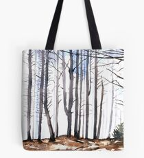 The colour of Winter is in the imagination Tote Bag