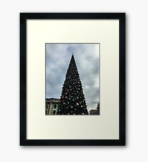 Oh Christmas tree  Framed Print