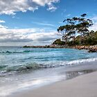 Die Bucht der Feuer in der Binalong Bucht, Tasmanien von Christine Smith