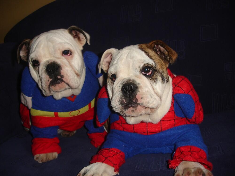 British Bulldogs by Littlebullydog