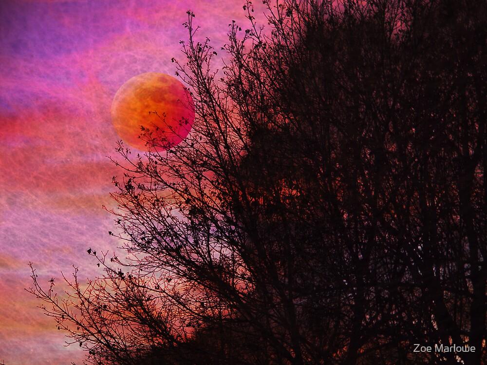 Textured Twilight by Zoe Marlowe