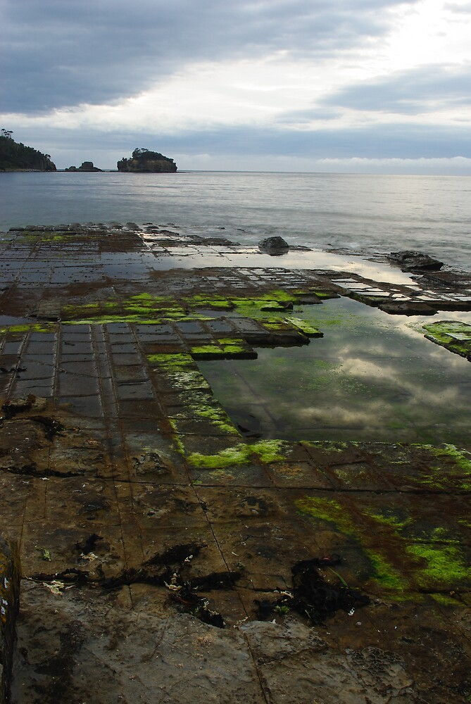 Tessellated Pavement - Early by Greg Eyre