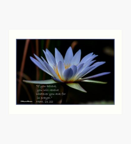 THE BLUE WATERLILY – Nymphaea nouchall Art Print