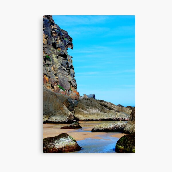 Eagle Face - Redhead Beach NSW Canvas Print