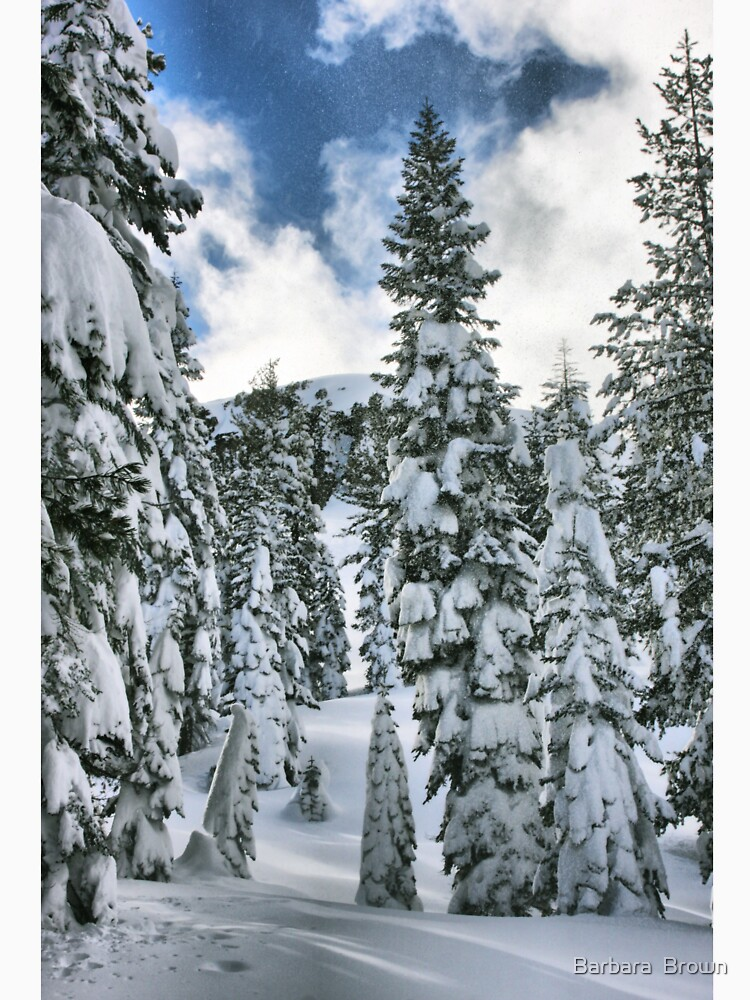 Snow Laden by lenzart