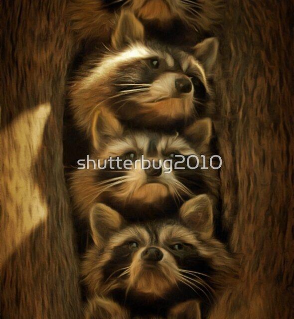 Renegade, Rascal, Rebel, Ricochet and Randy, The Hollow Tree Gang by shutterbug2010