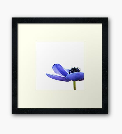 Blue Tutu Framed Print