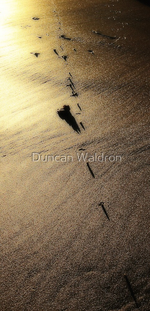 Shadows & Gold IV by Duncan Waldron