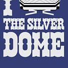 Silverdome Love by D24designs