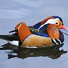 MANDARIN MAJESTY by mc27